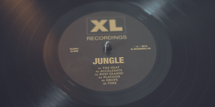 detailist-jungle-vinyl